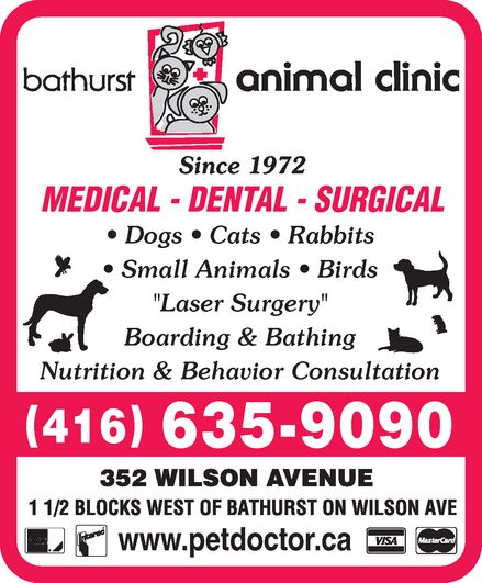 Ads Bathurst Animal Clinic