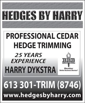 Ads Hedges by Harry