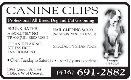 Ads Canine Clips