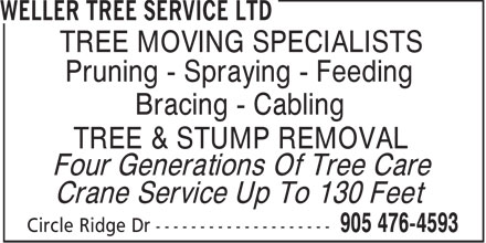 Ads Weller Tree Service Ltd