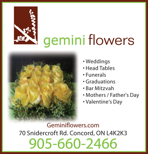 Ads Gemini Flowers