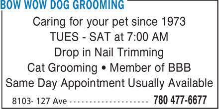 Ads Bow Wow Dog Grooming