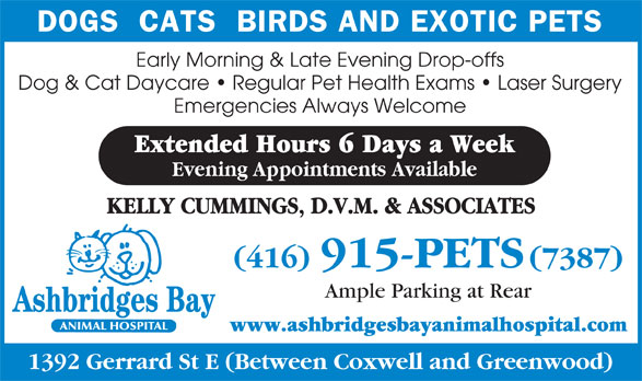 Ads Ashbridges Bay Animal Hospital