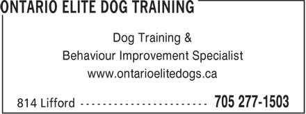 Ads The Ontario Dog Trainer