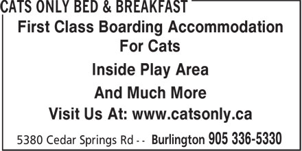 Ads Cats Only Bed & Breakfast