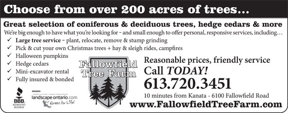 Ads Fallowfield Tree Farm-Cut your own