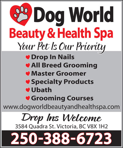 Ads Dog World Beauty & Health Spa