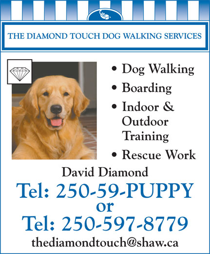 Ads The Diamond Touch Dog Walking Services