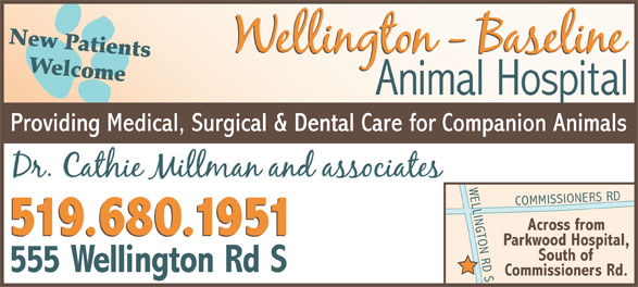 Ads Wellington-Baseline Animal Hospital