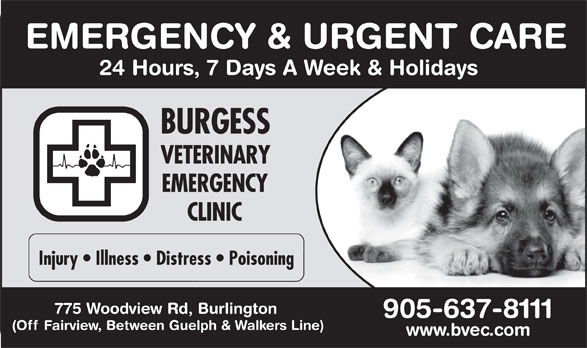 Ads Burgess Veterinary Emergency Clinic