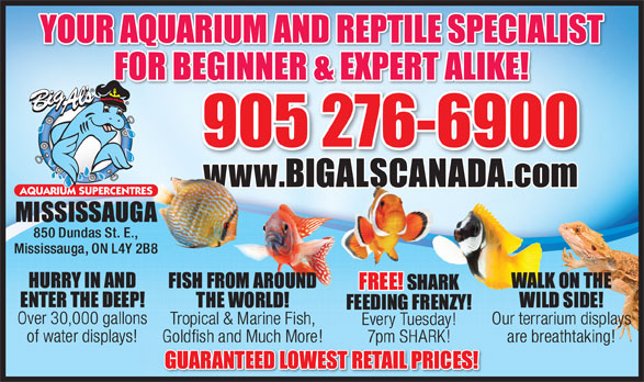 Ads Big Al's Aquarium Supercentres